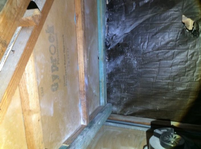 Green Timbers are new Timbers replaced to where termite evidence is located above the shower area to the bathroom