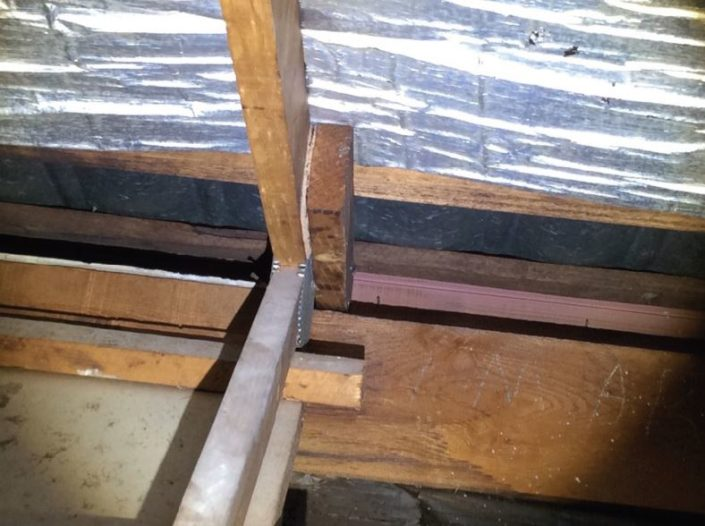 Termite mudding between roof Timbers above the bathroom shower area